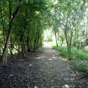 Pathway through Irlam Linear Park - May 2018
